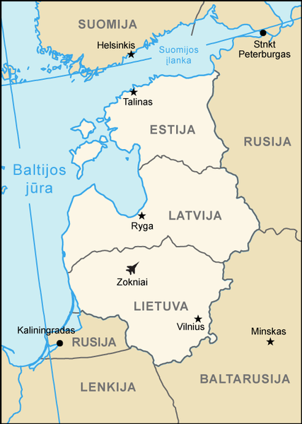 Lithuania: Baltics Cannot Image 100 Percent Security Without US